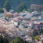 Yoshino mountain Japan village sakura cherry blossom